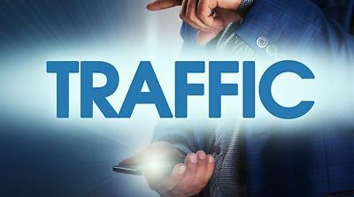 10,000 views for your website real web traffic SEO Social Media Business