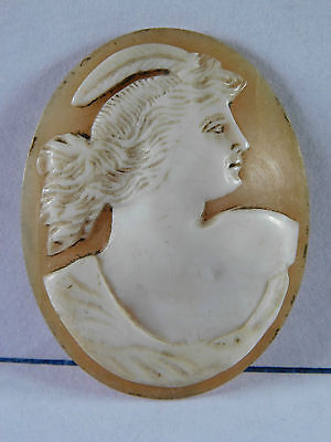 ANTIQUE CARVED CAMEO for BROOCH