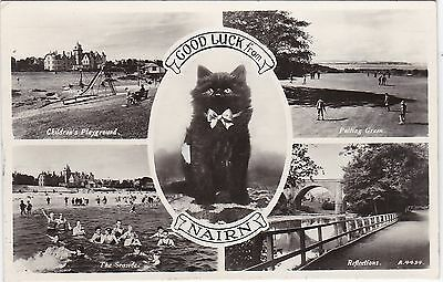 Black Cat Multiview, NAIRN, Nairnshire RP
