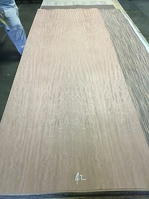 """Wood Veneer Composite Movingue 34x98 1 Piece 10Mil paper Backed """"EXOTIC""""CAL 42"""