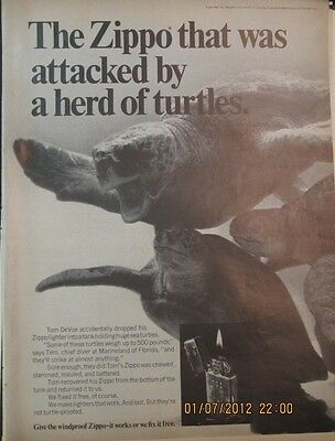 Vintage Original 1969 Zippo Lighter Print art Ad Attacked by a Herd of Turtles