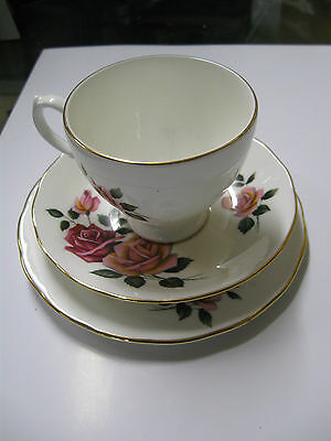Royal Vale Tea Cup 3 Piece Bone China Set CUP SAUCER AND TEA PLATE