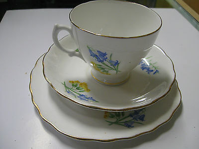ROYAL VALE ENGLAND Tea Cup 3 Piece Bone China Set CUP SAUCER PLATE
