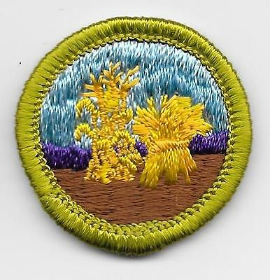 Boy Scout Small Grains Merit Badge Type H Discontinued