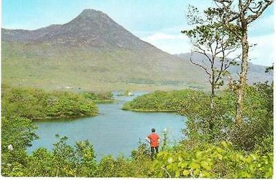 Ballynahinch Lake, Co. Galway - with Benlettery Mountain - postcard, stamp 1975