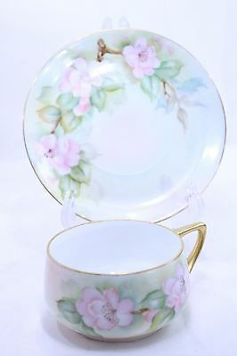 Rosenthal Bavaria Donatello Pink flowers Gold Trim Teacup and Saucer set Cup