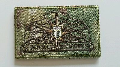 Tactical law enforcement pin multicam patch DSF, TACLET DHS USCG DSFSWAG