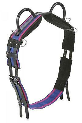 Busse Lunging belt Double Handles Floor work Vaulting blue Shetty Pony WB