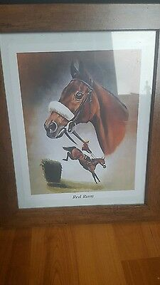 red rum portraint. grand national.