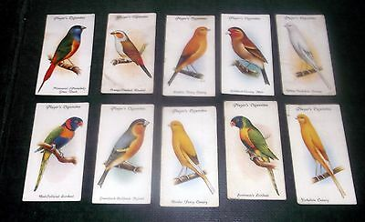 10 Players Cigarette Cards Aviary & Cage Birds
