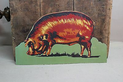 SCARCE 1920's DUROC PIG HOG DISPLAY SIGN GAS TEXAS FARM COKE  66 NEON