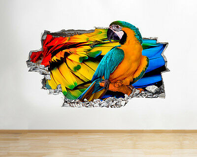 Q496 Parrot Colourful Living Hall Smashed Wall Decal 3D Art Stickers Vinyl Room