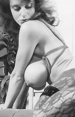 9,000 Vintage Images of Busty WOMEN  on CD