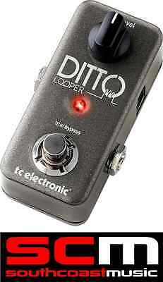 TC Electronic Ditto Looper Guitar Loop FX Pedal 5 Minutes Of Looping w/ Warranty