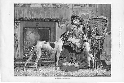 Little Girl And Dogs By Fire Greyhound Fox Terrier Antique Dog Print From 1883