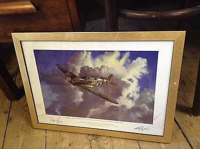 75 year Spitfire Aircraft Robert Mayston Vera Lynn and 4 Pilots Signed Print