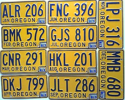 Collector Oregon 1979  Lot of 10 Different Months Old License Plate Garage Craft
