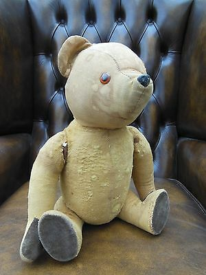 Chad Valley vintage teddy bear collectable