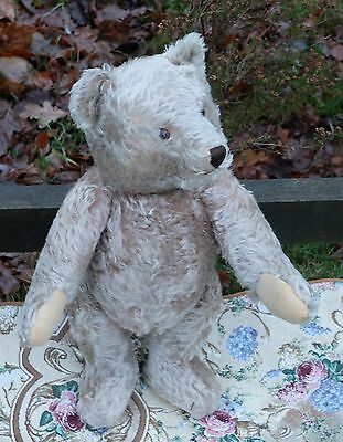 """ADORABLE VERY OLD LARGE 21"""" GERMAN STEIFF BEAR, BUTTON IN EAR, c.1950's"""