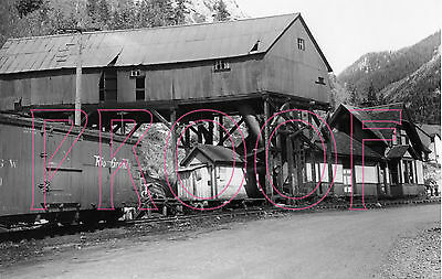 Rio Grande Southern (RGS) Ophir Station with D&RGW Boxcar in 1951 - 8x10 Photo