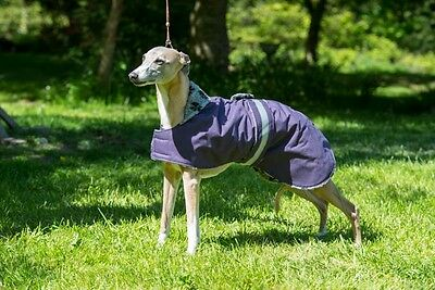 "WHIPPET AND LURCHER  WATERPROOF RUBBER BACK RIP STOP COAT 20"" to 30"" NEW"