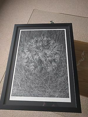 Kai and Sunny - Caught By The Nest - Box Set Edition Print, Framed