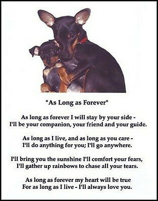 "Beautiful MIN PIN print ""AS LONG AS FOREVER"" puppy poem Miniature Pinscher NEW!"
