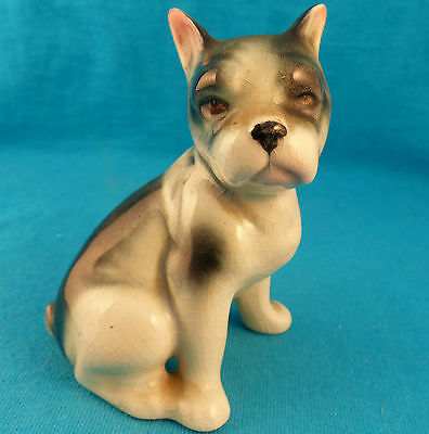 old antique Boston terrier dog detailed sweet face FREE SHIPPING very special