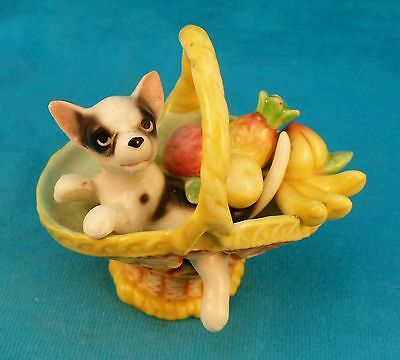 vintage Chihuahua puppy in fruit basket FREE shipping old rare dog cutest ever!