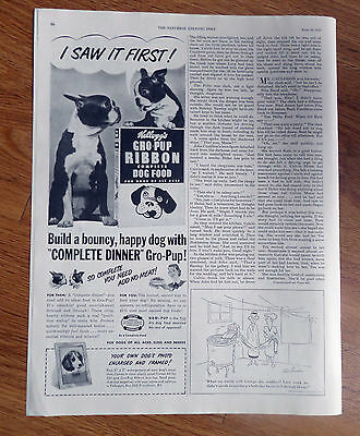 1950 Kellogg's Gro-Pup Ribbon Dog Food Ad  Boston Terrier Dogs