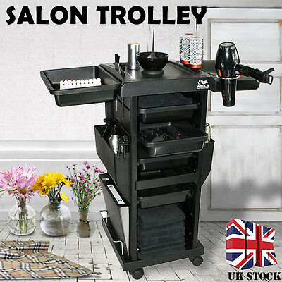 Salon Barber Hairdresser Drawers Storage Trolley Colouring Hair Spa Roller Cart