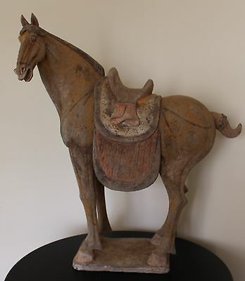 Large And Impressive Chinese Tang Dynasty Horse
