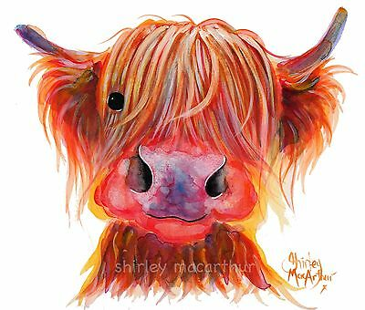 HIGHLAND COW PRINTS of Original Painting ' CHILLI CHOPS ' by SHIRLEY MACARTHUR