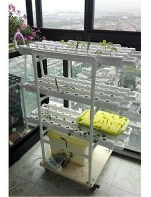 Hydroponic & Aeroponic Plant and Flower Growing System PRE-ORDER