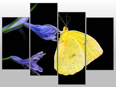 Yellow Butterfly Blue Flowers Large Split Panel 4 Panel Canvas Wall Art Image