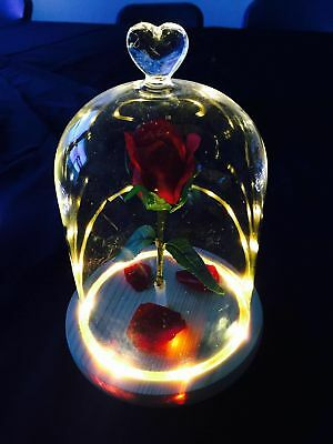 The Beauty And The Beast Enchanted Flower Rose Belle Glass Night Light LED Gold