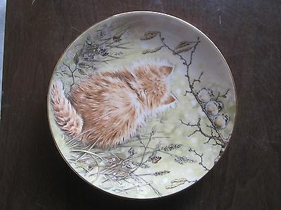 Birdwatcher 4th in Kitten Classics Cat Plate Collection Royal Worcester (KJ)