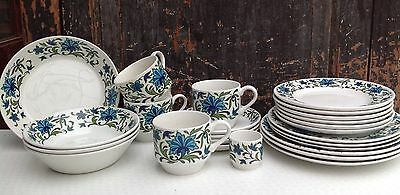 25 pieces of mid century Midwinter Spanish Garden tableware