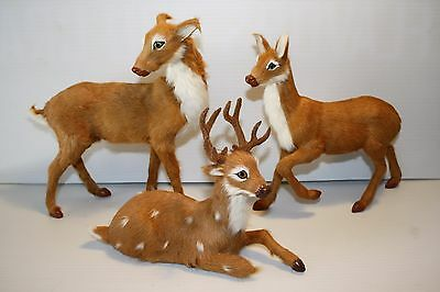 Vtg Taxidermy Deer Set Family Buck Mother Fawn Real Fur Glass Eyes Toy Figure