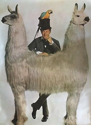 Vintage Poster Dr. Dolittle Pushmi-Pullyu Head Shop Pin-up 1970's Television TV