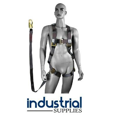 Safety Harness & 2metre Absorbing Lanyard + Double Action Snap Hook (Height) EWP