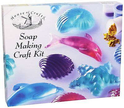 Craft Kit ~ SOAP MAKING ~ Creative/Hobby/Activity