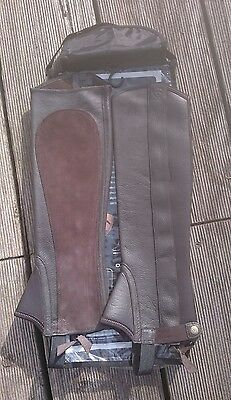 Ariat Oxford Chap  brown chocolate XSM brand new in the bag ideal Xmas gift