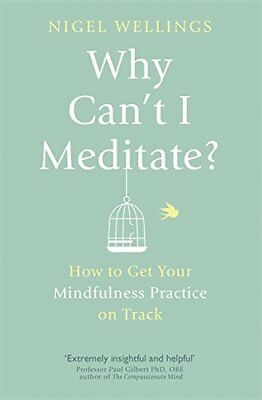 Why Can't I Meditate?: how to get your mindfulness practice on track, Wellings,
