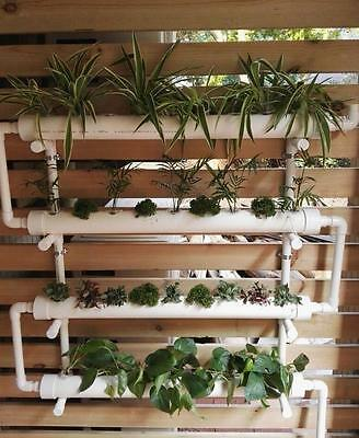 Hydroponic Planting Wall Mounted 36 Plant Growing System PRE-ORDER