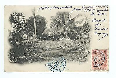 MADAGASCAR: French mail, postcard Tamatave to France 1905.