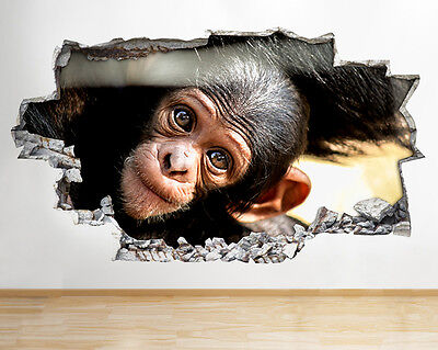 R194 Baby Monkey Animal Bedroom Smashed Wall Decal 3D Art Stickers Vinyl Room