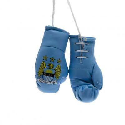 Manchester City F.C. Mini Boxing Gloves