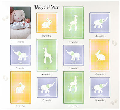 Malden 12 Opening Baby's 1st Year Collage Frame One Size