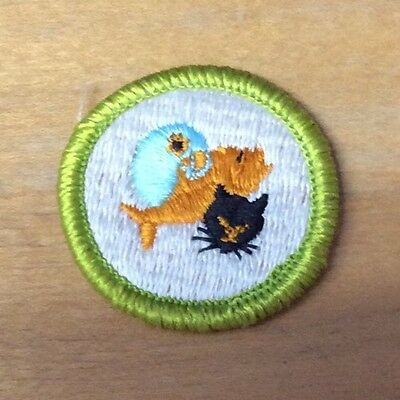 BOY SCOUT PETS Merit Badge Never Used Type H - $6 99   PicClick